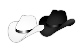 Black Hat SEO & White Hat SEO